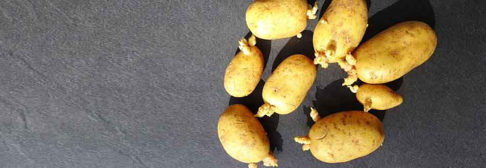 Kann Man Keimende Kartoffeln Essen
